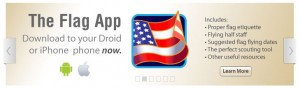 The Flag App icon