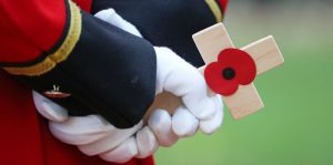 Poppies and the Great War